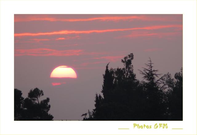 On ne peut pas vivre sans soleil... P1020099c